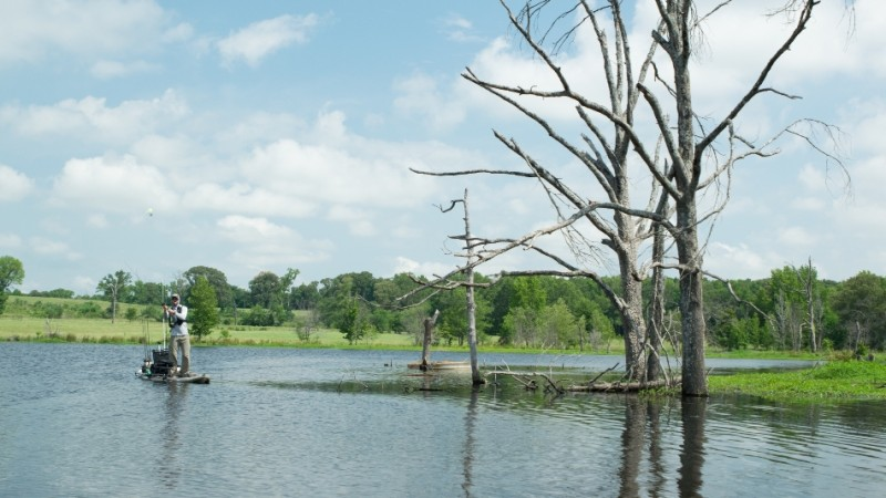Texas bass fishing fishing texas bass private locations for Wheeler lake fishing report